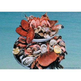 5 SETS DE TABLE MOTIF FRUITS DE MER